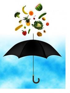 food-safety-definition-blog