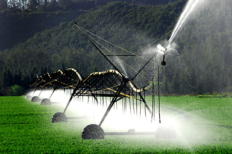 Sourcing Irrigation Water for Agricultural Safety - Food Safety in a