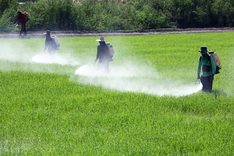 Men spraying farm field with pesticide